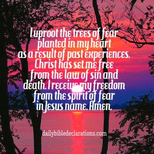 Uproot the trees of fear