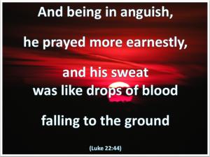 Jesus prayed at Gethsemane