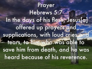 Pray with loud cries