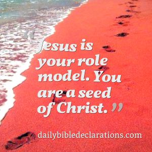 Jesus is your role model