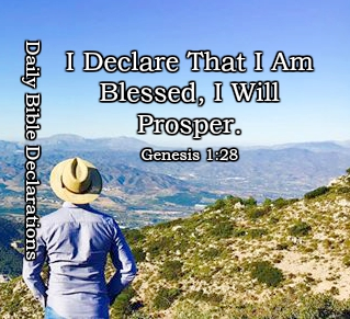 I Declare that I Am Blessed by God, I Will Prosper. Genesis 1:28